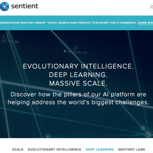 Sentient Technologies : WordPress Website Design
